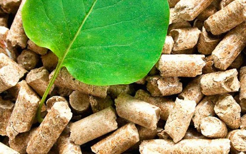 hoja para la producción de pellets