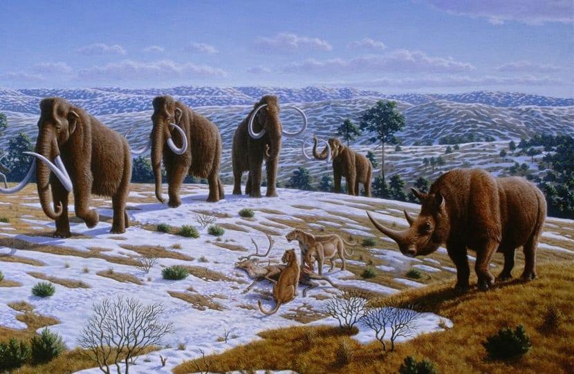 Animales en la glaciación
