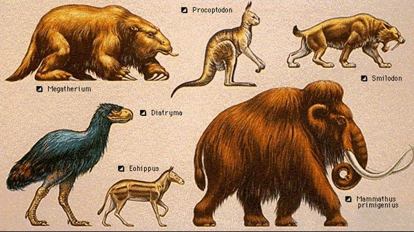 Animales presentes en el cenozoico