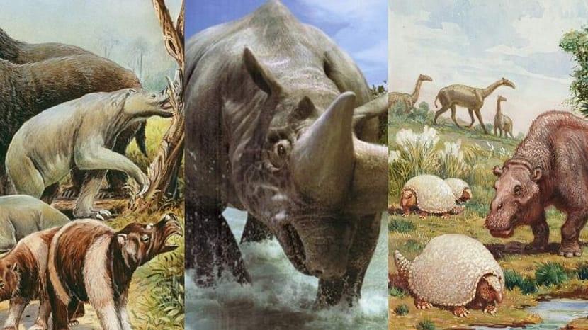 animales del cenozoico