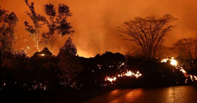 La lava incendia el bosque