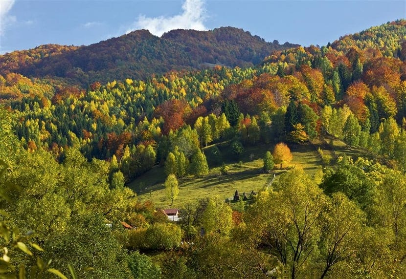Montes Cárpatos