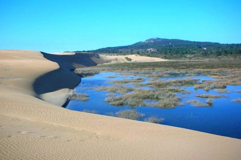 Formación de rías gallegas y procesos dunares
