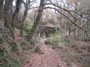 Montes de Galicia