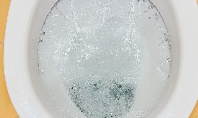 Falso mito del giro del agua del retrete