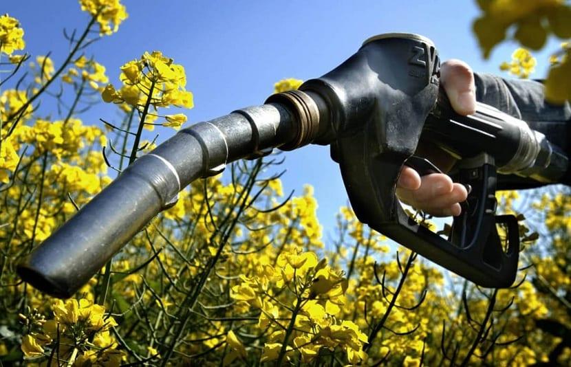 Biocombustibles de generacion