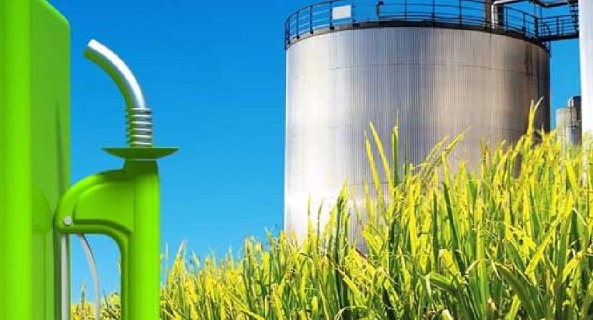 Formacion de bioetanol