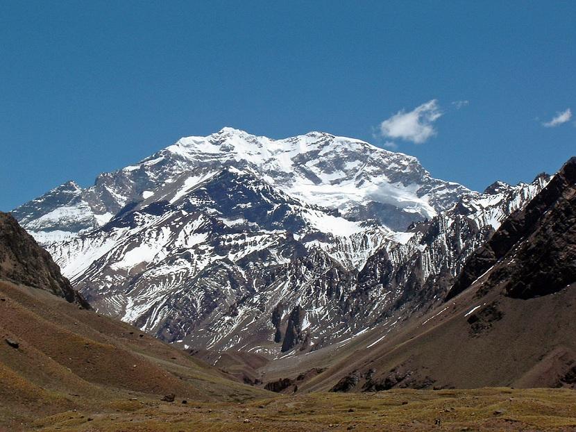 Flora y fauna de los Andes