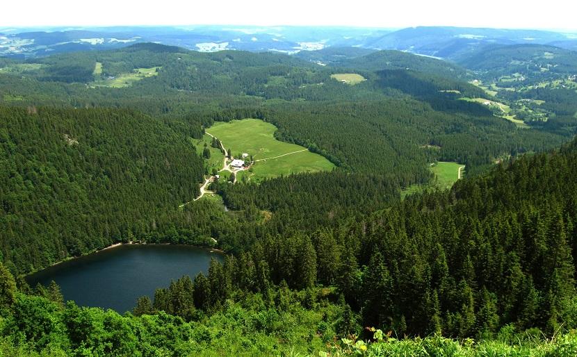Naturaleza del Danubio