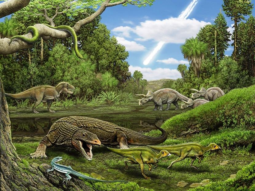 Desarrollo de reptiles