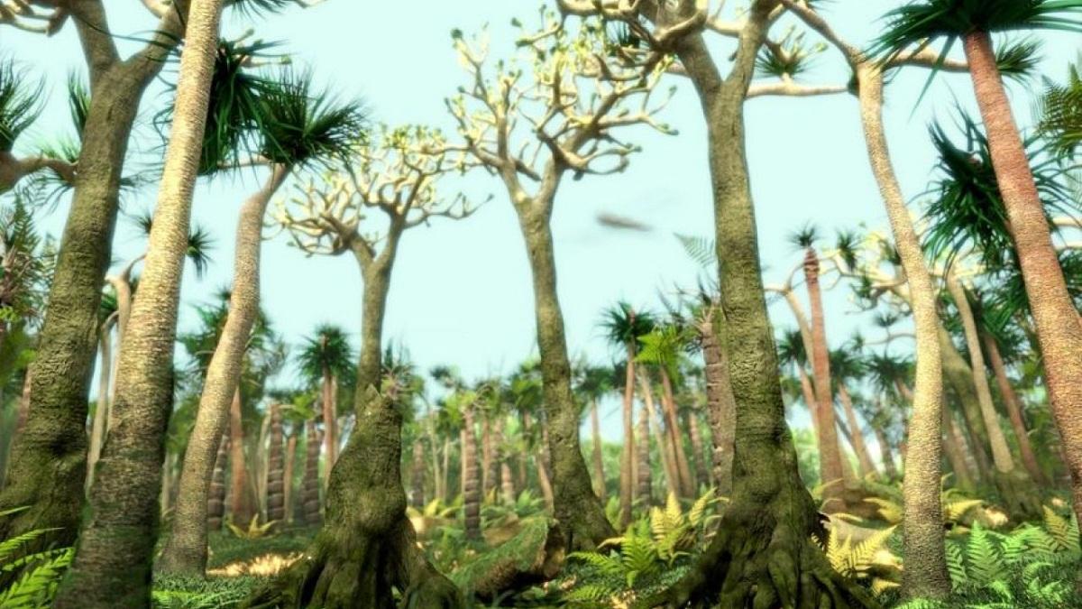 Flora del carbonífero