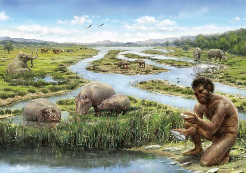 Primeros seres humanos