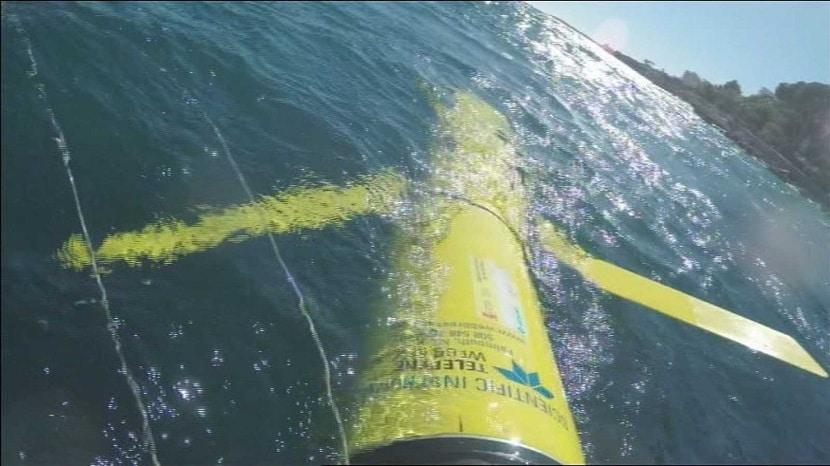 Tipos de oceanografía