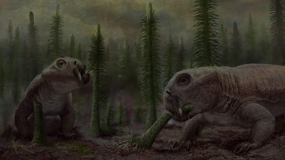 Extinción del triásico