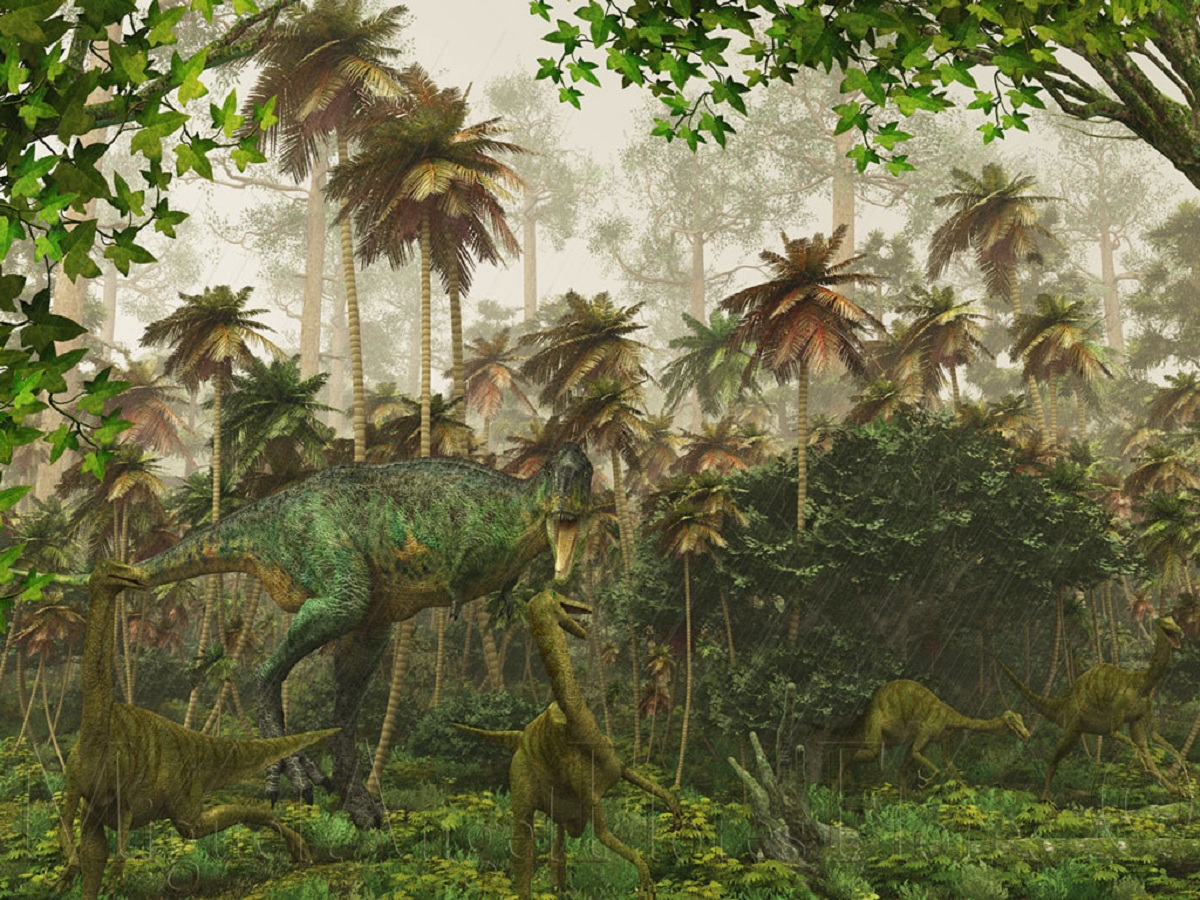 Ecosistemas primitivos