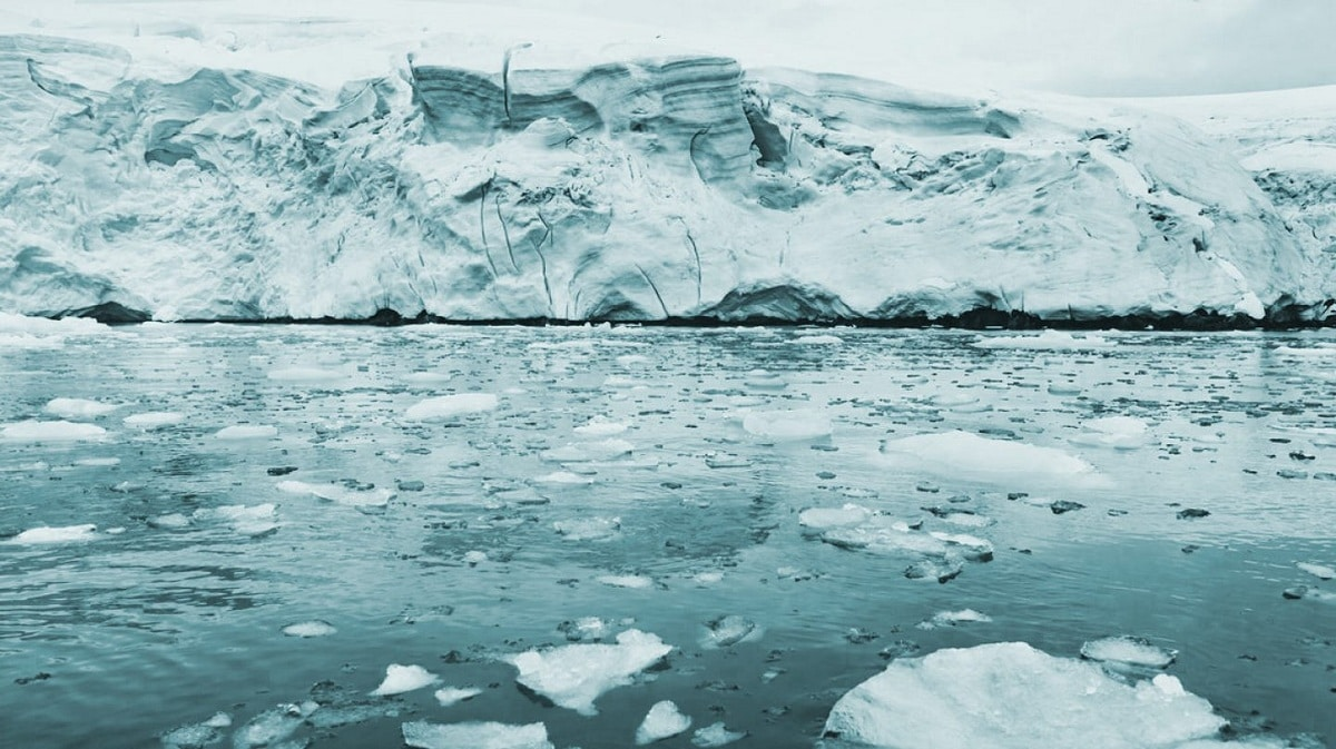 Protección del océano Antártico