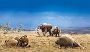 Desarrollo de la fauna del Plioceno