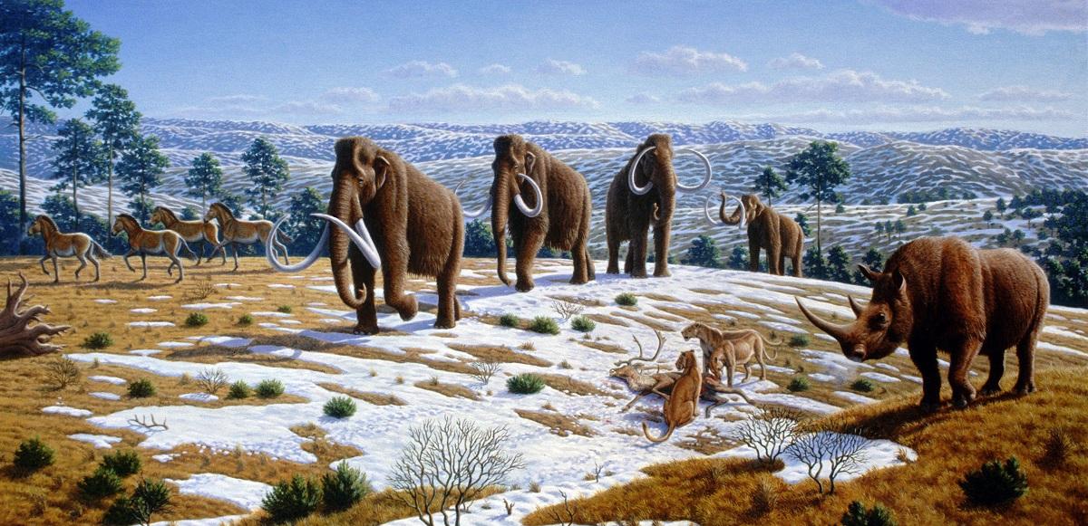 Fauna del Pleistoceno