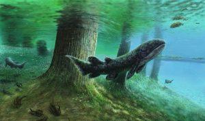 Fauna del devonico caracteristicas