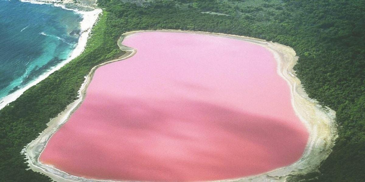 Lago Hillier rosado