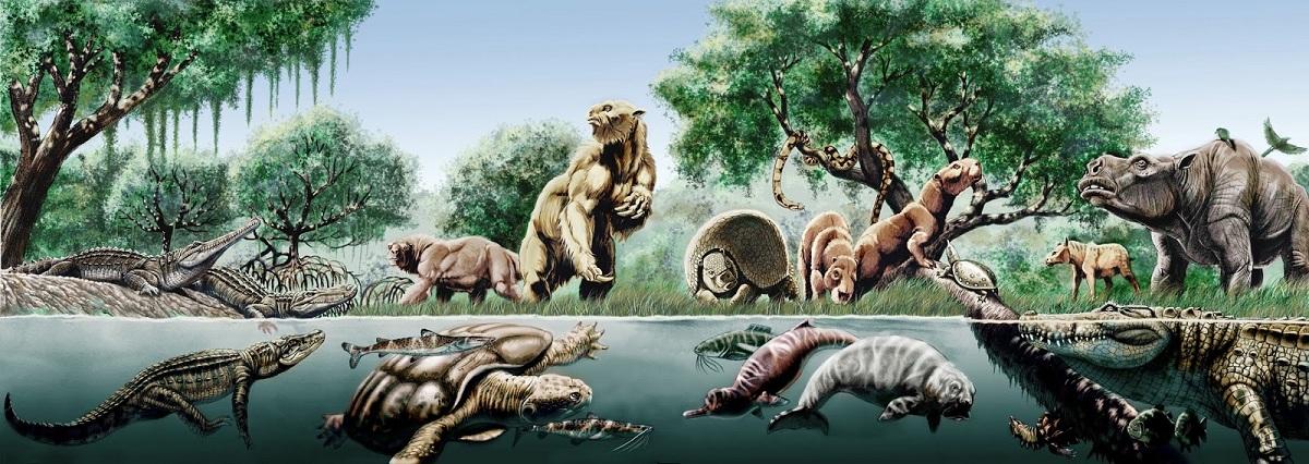 Mega fauna del Pleistoceno