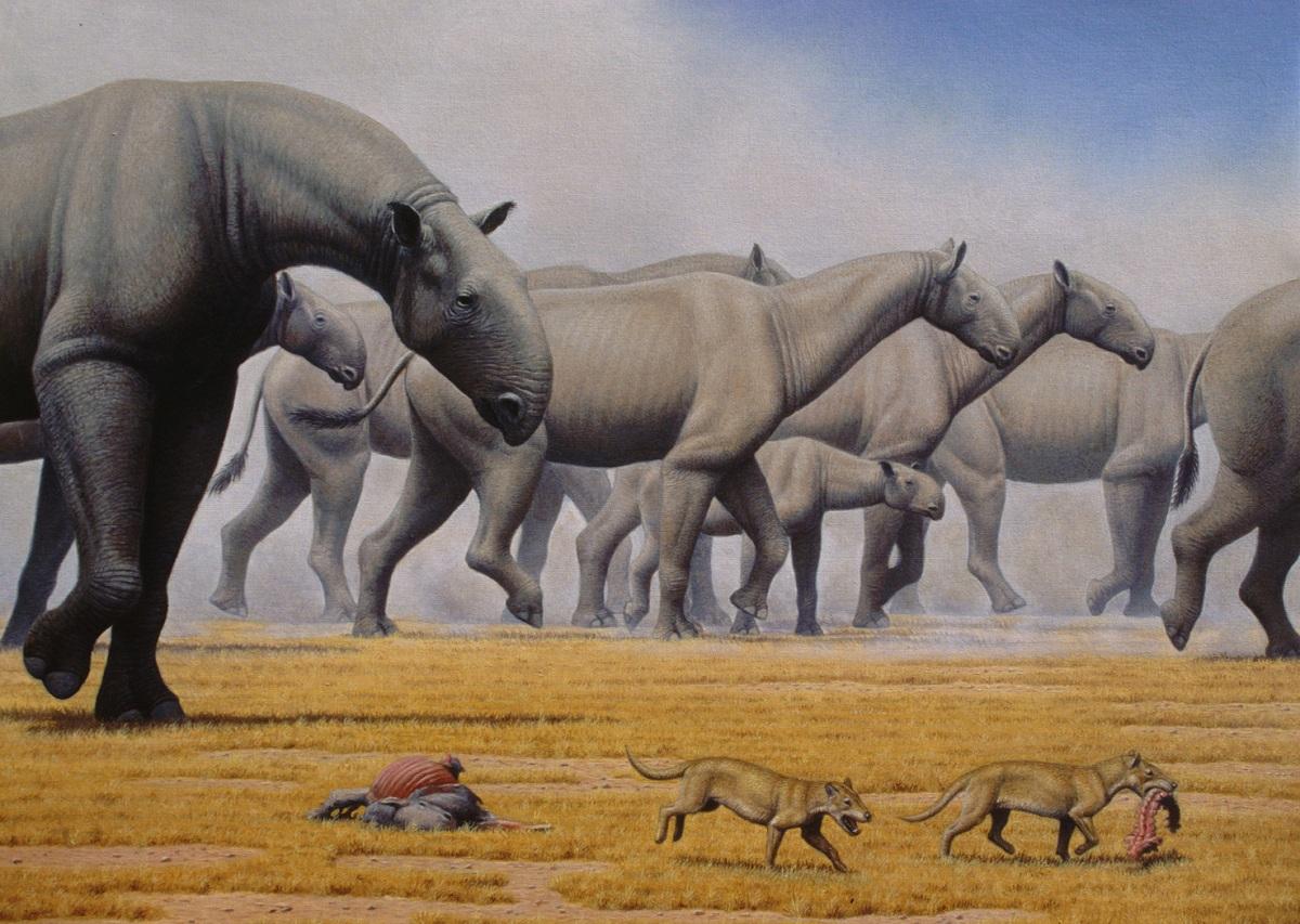 Fauna del Oligoceno
