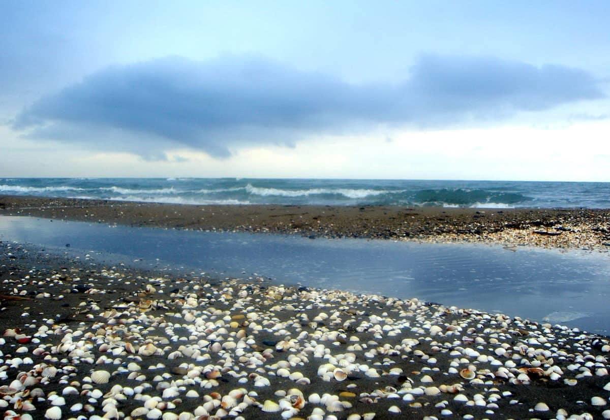 contaminacion del mar Caspio