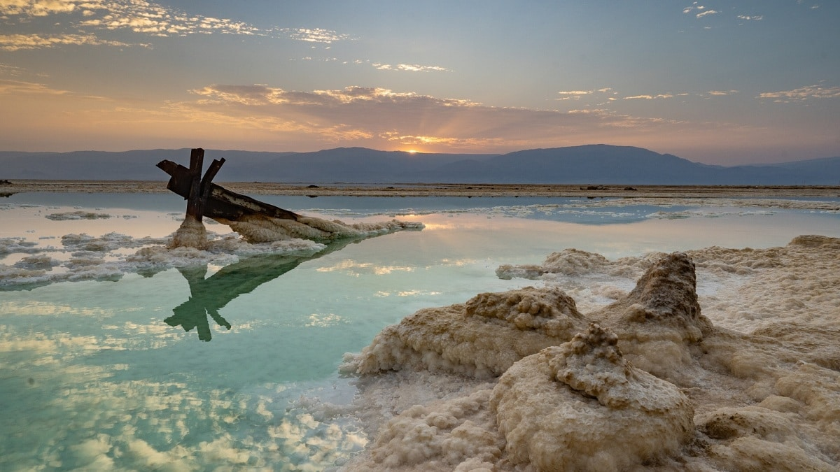 biodiversidad mar muerto