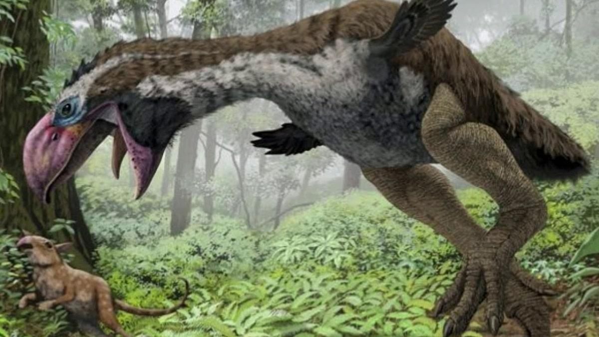 Fauna del Paleógeno