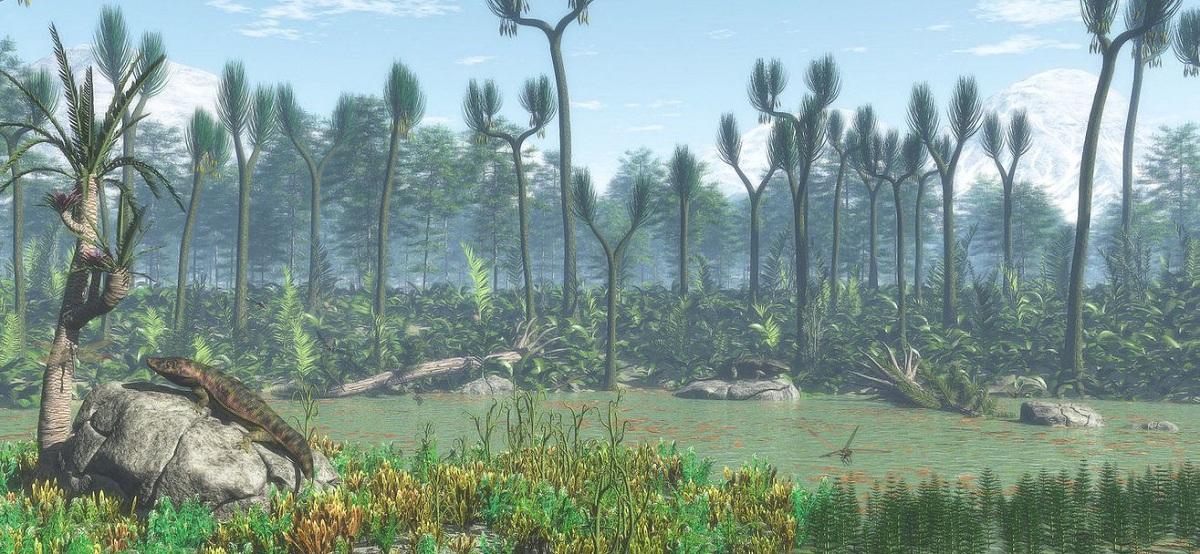 ecosistemas y fauna del carbonífero