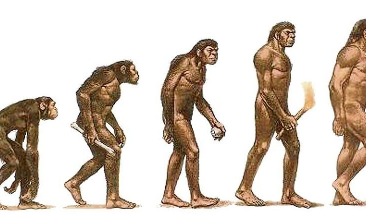 avance del ser humano