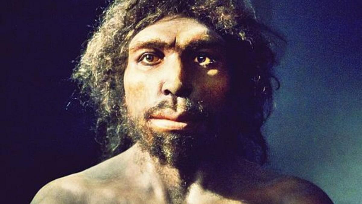 cambios entre hominidos