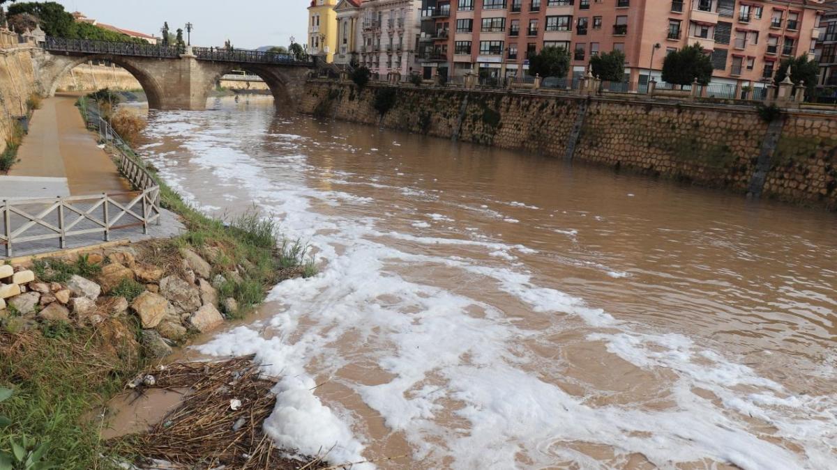contaminacion del rio segura