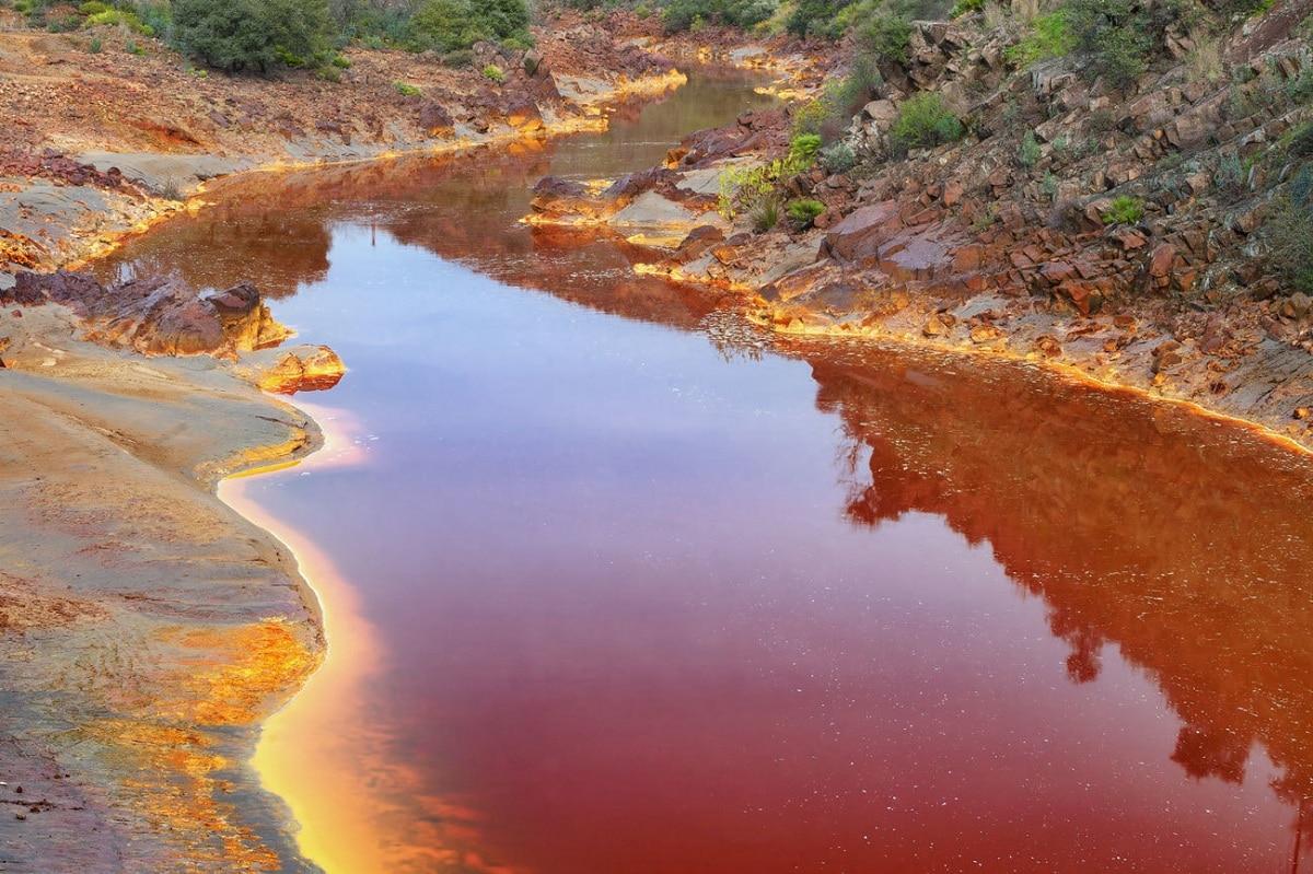 rio tinto y ecosistema especial