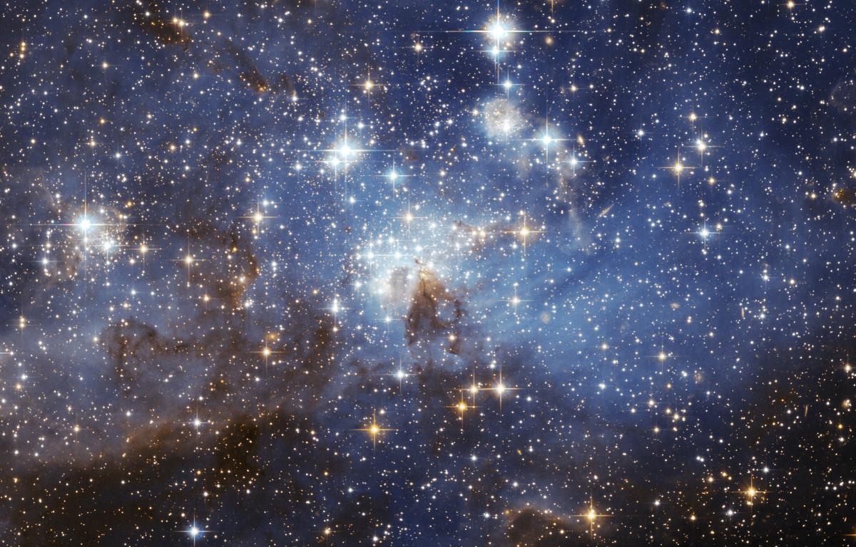 variedad de estrellas