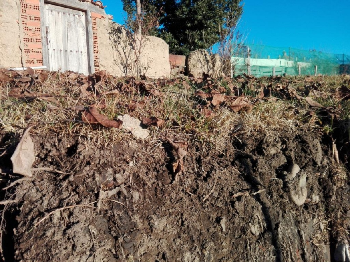 estudio del suelo en edafologia