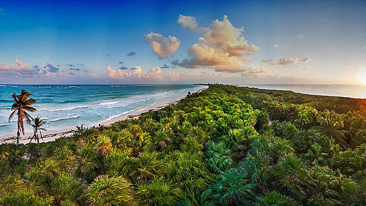 ecosistemas terrestes y marinos