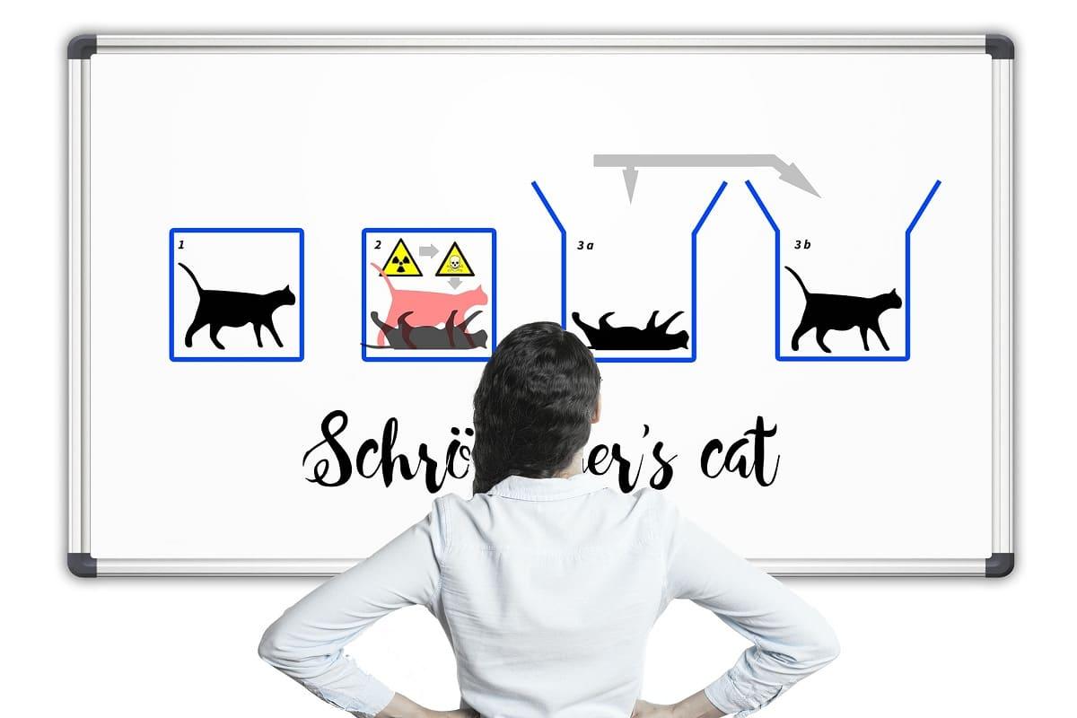 gato de Schrödinger