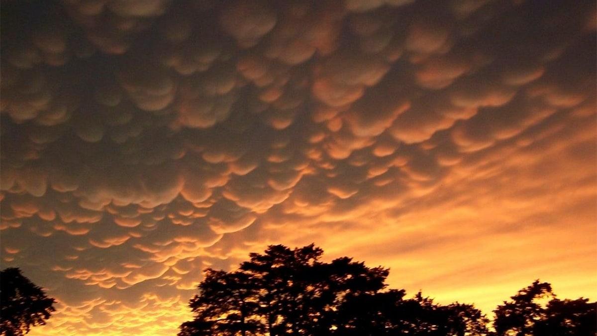 nubes mammatus en el cielo