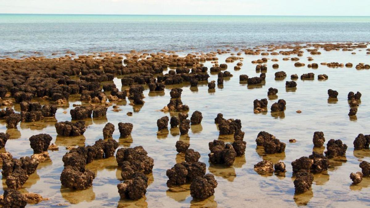 rocas en los lagos