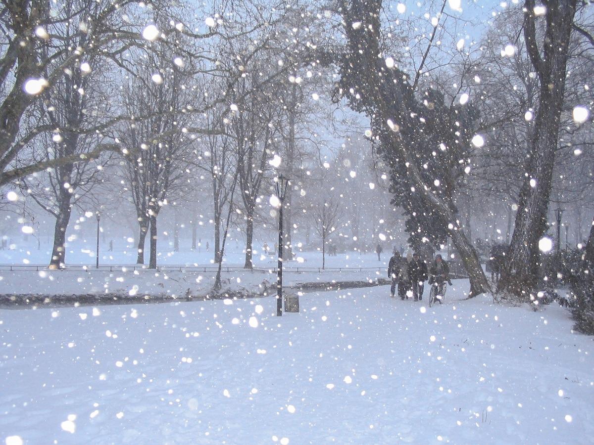 que es la nieve